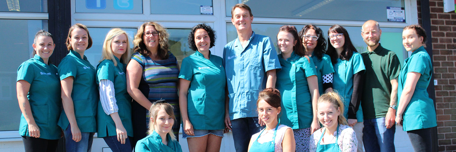 stephen green dental team